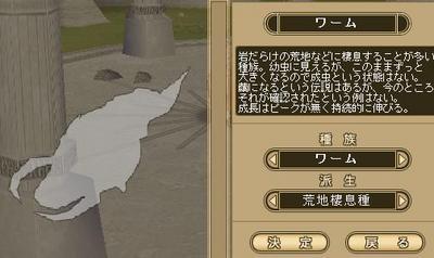 わむ説明.JPG